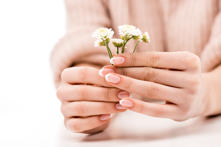 Foto per Cropped view of girl with natural manicure holding daisies, isolated on white - Immagine Royalty Free