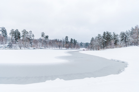 Foto per scenic view of snow covered trees and frozen lake in winter park - Immagine Royalty Free