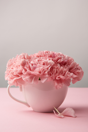 Photo pour close-up view of beautiful tender pink carnation flowers in cup on grey - image libre de droit