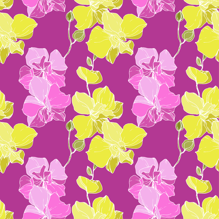 Vector Yellow And Pink Orchid Floral Botanical Flower