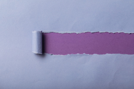 Foto de torn blue paper with rolled edge on violet background - Imagen libre de derechos