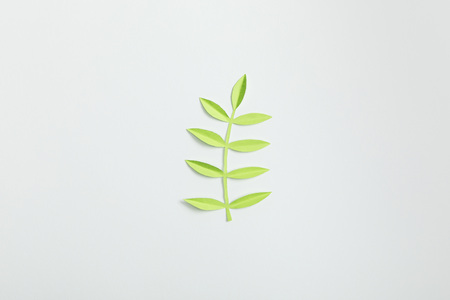Foto per top view of green paper plant with leaves on grey background - Immagine Royalty Free