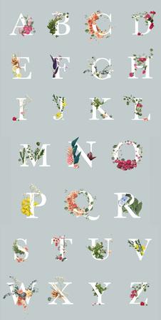 Foto de multicolored bright letters with plants and flowers isolated on grey, English alphabet - Imagen libre de derechos
