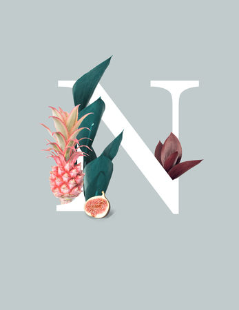 White letter N with pink pineapple, fig and green leaves isolated on grey background