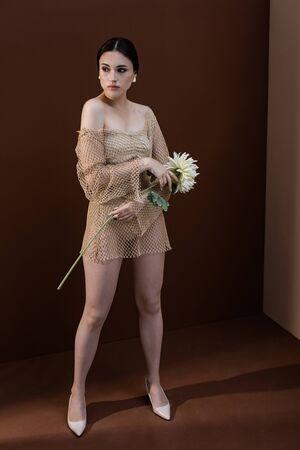 Foto de Trendy model with flower in hands standing on brown background, looking away - Imagen libre de derechos