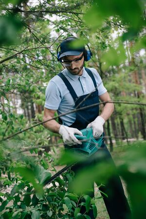 Selective focus of gardener in hearing protectors and overalls trimming bushes with electric trimmer
