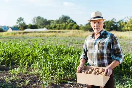 Foto de happy self-employed farmer holding wooden box with potatoes near corn field - Imagen libre de derechos