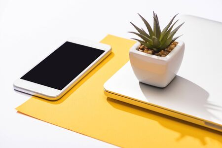 Photo pour high angle view of smartphone, laptop, plant and paper - image libre de droit