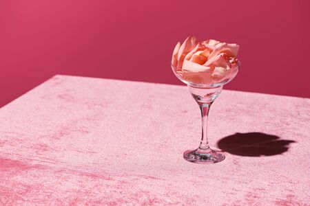 Photo pour rose petals in glass on velour pink cloth isolated on pink, girlish concept - image libre de droit