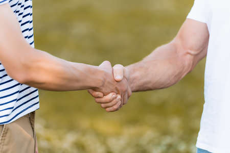 Photo pour cropped view of father and teenager son shaking hands - image libre de droit