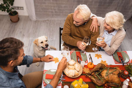 Photo pour high angle view of golden retriever near family holding glasses of white wine during thanksgiving dinner - image libre de droit