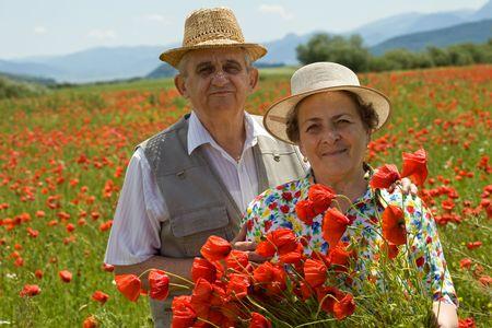 Contented senior couple on the poppy field enjoying summer, picking flowers