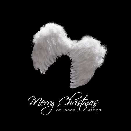 White angel wings lit from above - christmas greeting on black