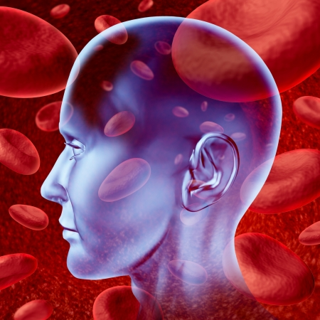 Human brain stroke blood circulation symbol with red blood cells flowing through veins and human circulatory system representing a medical health care symbol.