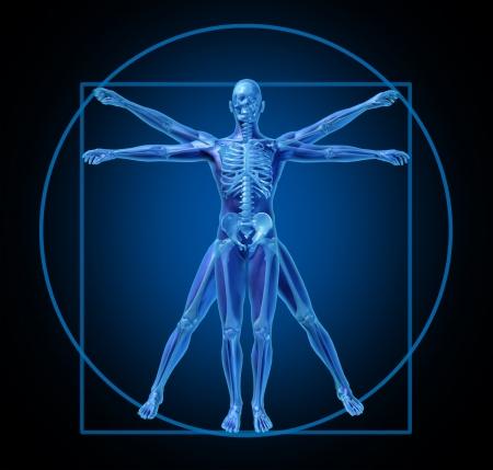 vitruvian-human-diagram-medical