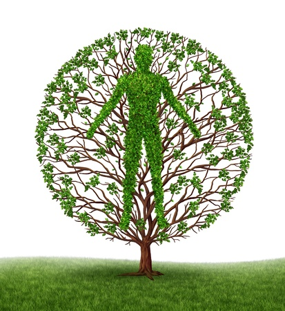 Tree with branches and green leaves in the shape of a persons anatomical body on white