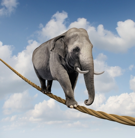 Managing risk and big business challenges and uncertainty with a large elephant walking on a dangerous rope high in the sky as a symbol of balance and overcoming fear for goal success