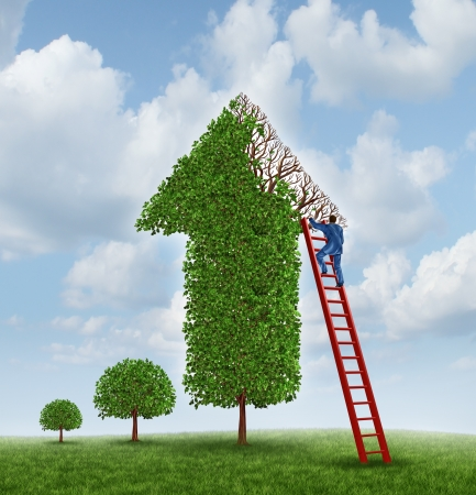 Investing advice and financial help with a tree shaped as an upward arrow with missing leaves on the branches and a businessman climbing a red ladder to inspect the problem and cure the wealth management challenge