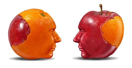 Create Synergy and leadership in social ties as multi ethnic cooperation in education learning and fair trading from one partner to another team member with an apple and an orange puzzle shaped as human heads on white