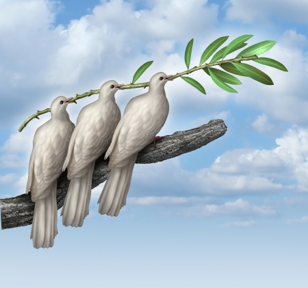 Group Diplomacy as a concept of negotiated peace with three white doves working together in partnership and friendship holding an olive branch as a symbol of fraternity and hope for the future of humanity on the journey for human rights and freedom