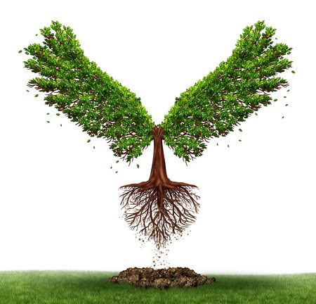 Freedom potential and the power of determination as a business and life concept with a green tree growing open wings and flying off to success as a metaphor for evolving to find opportunity