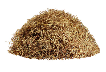 Hay pile isolated on a white background as an agriculture farm and farming symbol of harvest time with dried grass straw as a mountain of dried grass haystack