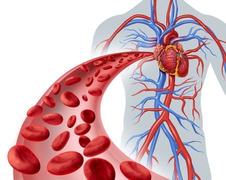 Blood heart circulation health symbol with red cells flowing through three dimensional veins