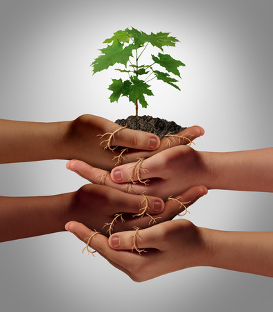Community cooperation concept and social crowdfunding investment symbol as a group of diverse hands nurturing a sapling tree with roots wrapped and connecting the people together.