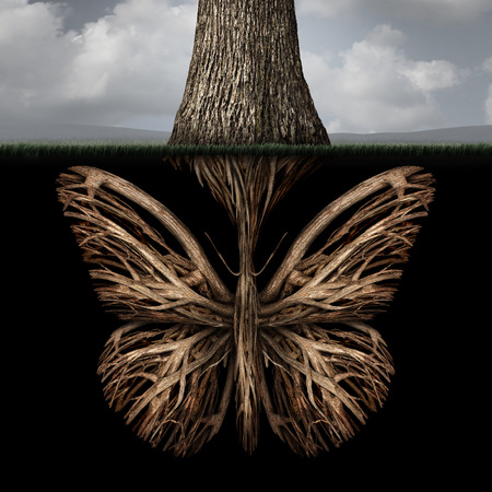 Creative roots concept as a tree with a root shaped as a butterfly as a powerful environmental metaphor or symbol for inner thoughts and strong creativity foundation.