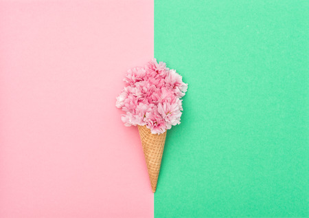Photo pour Cherry tree blossom in ice cream waffle cone on hipster colors background. Styled flat lay. Minimal concept - image libre de droit