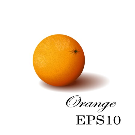 Orange isolated, Orange. Illustration of Orange. Orange on transparent background. Juicy Orange, tropical fruit.