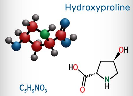 Illustration pour Hydroxyproline , Hyp, C5H9NO3 molecule. It is is a common proteinogenic amino acid and a major component of the protein collagen. Structural chemical formula and molecule model. Vector illustration - image libre de droit