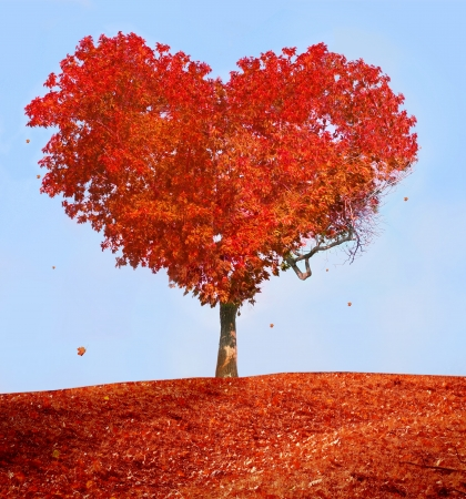 Foto per Tree of love - Immagine Royalty Free