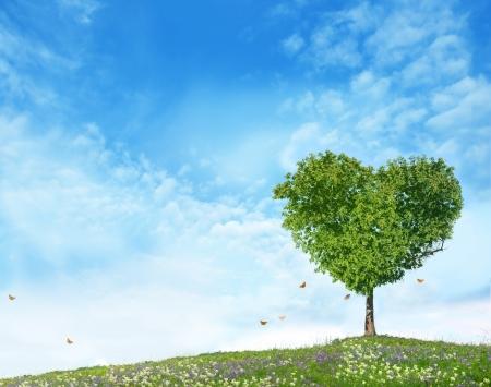 Foto de Tree of love  - Imagen libre de derechos