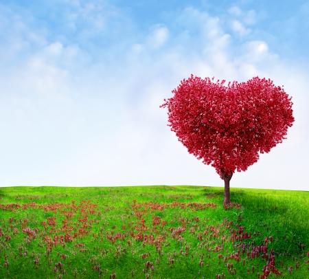 Photo pour Tree of love  - image libre de droit