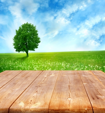 Foto de summer background with wooden planks  - Imagen libre de derechos