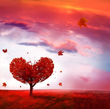 Photo pour Autumn landscape with  love tree - image libre de droit