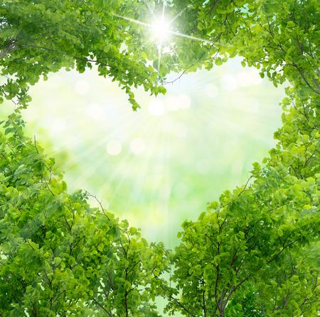 Photo pour Green leaves in heart shape - image libre de droit