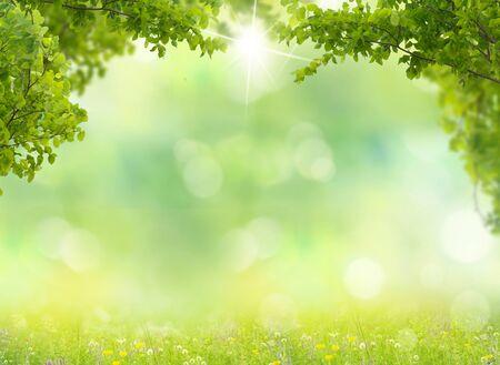 Foto de  Nature background. Spring meadow with green leaves. - Imagen libre de derechos