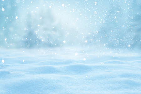 Photo pour Winter background with snow and blurred bokeh.Merry Christmas and happy New Year greeting card with copy-space. Snowy winter landscape with fir trees and snowfall. - image libre de droit