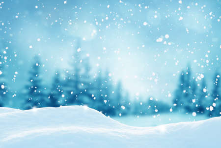 Photo pour Christmas landscape.Snow background.Winter fairytale.Merry christmas and happy new year greeting card with copy-space. - image libre de droit