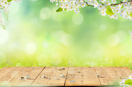 Spring background with wooden table. Spring blossom with copy space.