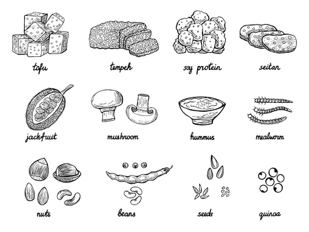 Illustration for Set of hand drawn meat alternative or analogue for vegans, vegetarians, healthy eating. Food icons of soy protein, beans, tempeh etc. Black and white doodle vector illustration - Royalty Free Image