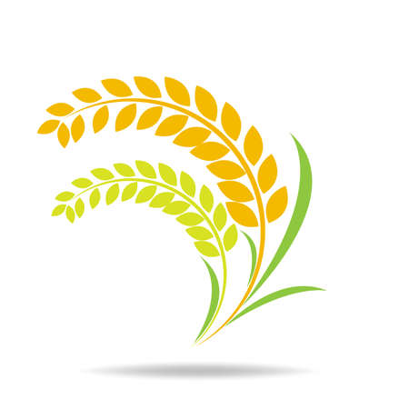 Illustration for Rice organic Circle paddy grain products and healthy food design vector - Royalty Free Image