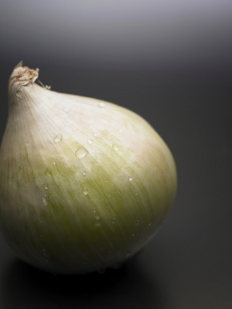 white onion with grey background