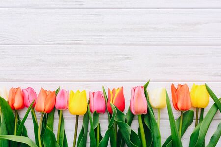 Photo pour Top view on color tulips in a row on white table - image libre de droit