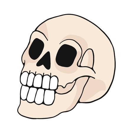 Illustration pour human skull cartoon vector illustration motif set. Hand drawn isolated bone elements clipart for nature blog, natural history bone skeleton graphic, anatomy education web buttons. - image libre de droit