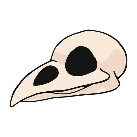 Illustration pour Bird skull cartoon vector illustration motif set. Hand drawn isolated avian bone elements clipart for nature blog, natural history bone skeleton graphic, anatomy education web buttons. - image libre de droit