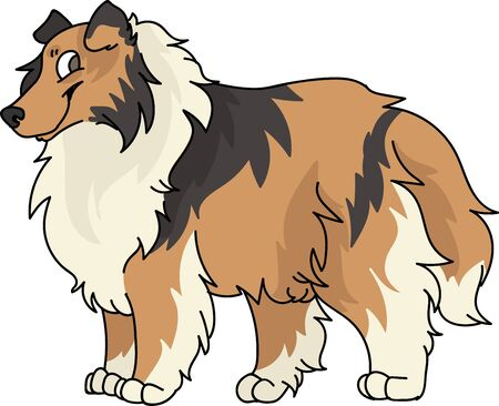 Illustration pour Cute cartoon rough collie dog breed vector clipart. Pedigree kennel sheepdog for dog lovers. Purebred domestic puppy for pet parlor illustration mascot. Isolated canine fluffy. - image libre de droit
