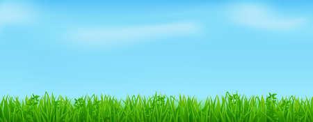 Illustration pour Green grass on spring lawn or field - image libre de droit